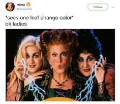Today must see this memes for a better day with 24 images 31 Nights Of Halloween, Halloween 2020, Halloween Humor, Halloween Stuff, Happy Halloween, Christian Romance Novels, Dankest Memes, Funny Memes, Fall Memes