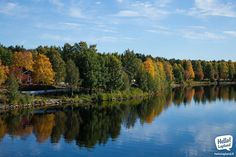Beautiful Autumn in Rovaniemi, around Kemijoki river. Where To Go, Finland, Magic, Autumn, River, Outdoor, Beautiful, Outdoors, Fall Season