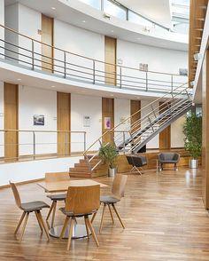 Stilvolle Lounge-Sitzgruppe mit den Sesseln und Bank des Programm ...