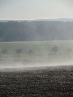 mist nebelschwaden