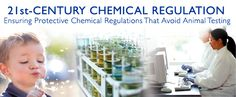 21st-Century Chemical Regulation: Ensuring Protective Chemical Regulations That Avoid Animal Testing