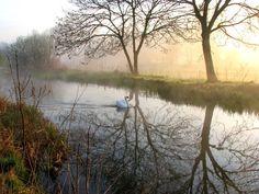 Morning at Hollyoake