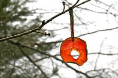 Dried fruit ornaments - Christmas for the wildlife