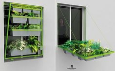 Apartment dwellers, get your veggies and herbs! Volet Végétal (AKA plant shutter) reinvents the window box | Designbuzz : Design ideas and concepts. I LOVE THIS!! I so have to try this