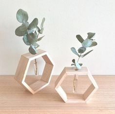 These Bud Vases are a unique way to display flowers or plant clippings in your home. They can be hung on the wall or simply place…