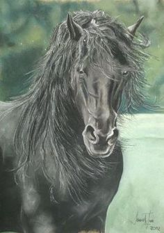 Caballo (Horse)