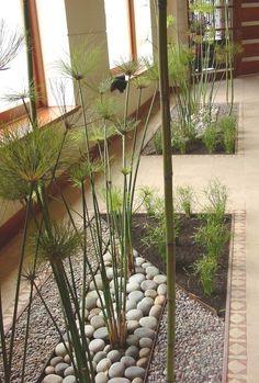 hall edificio Interior Garden, Balcony Garden, Front Yard Landscaping, Garden Inspiration, Beautiful Gardens, Indoor Plants, Outdoor Gardens, Garden Design, Landscape