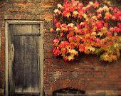Fall Fotografía - Indian Summer - Hojas de otoño de color naranja y amarillo - 8x10