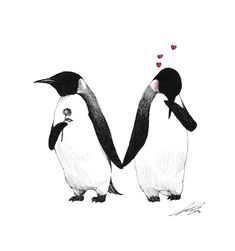 Drawings 2013 - 3 by Sungwon , via Behance Such a cute picture. Pinguin Drawing, Pinguin Tattoo, All About Penguins, Cute Penguins, Penguin Art, Penguin Love, Pinguin Illustration, Penguin Pictures, Bird Art