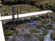 Harvested Plot with Transplanted Acrotelm by mcmaster ecohydrology, via Flickr