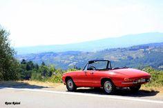 Alfa Romeo duetto boat tail