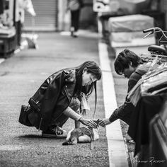 Tsukiji Outer Market, Tokyo - Japan / September 2015  © Copyright 2015 Mario Rasso All Rights Reserved. Please contact me, if you are interested in using my work e-mail: mario.rasso@outlook.com  Twitter: @mariorasso  The Tsukiji Market (築地市場 Tsukiji shijō), supervised by the Tokyo Metropolitan Central Wholesale Market (東京都中央卸売市場 Tōkyō-to Chūō Oroshiuri Shijō) of the Tokyo Metropolitan Bureau of Industrial and Labor Affairs, is the biggest wholesale fish and seafood market in the world and…