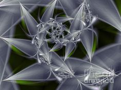 fractal leaves | Found on karin-kuhlmann.artistwebsites.com