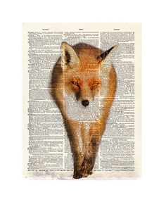 Walking RED FOX illustration upcycled dictionary page book art print - 161. $7.99, via Etsy.