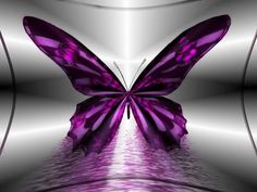Purple Butterfly Wallpaper Pink and Purple butterflies The Purple, Purple Stuff, All Things Purple, Shades Of Purple, Purple Rain, Red Things, My Daughter Quotes, I Love My Daughter, My Love