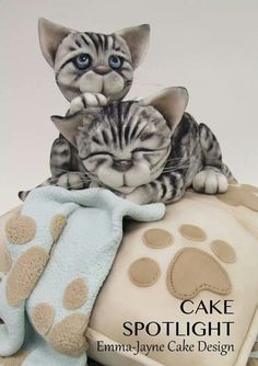 Kitten Cake so adorable on the paw print blankets/ www.callaraesfloralevents.com Tap the link for an awesome selection cat and kitten products for your feline companion!