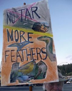 No Tar. More Feathers.