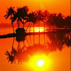 Safther Watches the Sun Set on a #Kerala Summer