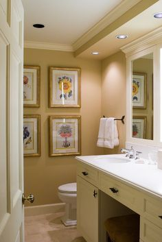 Bathroom Design, Pictures, Remodel, Decor and Ideas - page 87  ***Love what they've done with the ceiling/lights over the vanity and toilet!!!