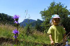 Szczawnica na granicy Pieniny National Park: Szczawnica Niżna ( nad Dunajcem) wycieczka szkoln...
