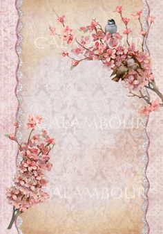Just arrived! Peach Flowers and Lace Calambour Rice Paper #decoupage, #peachflowers, #birds, #Whitelace