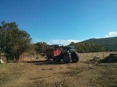 Labores de siembra http://www.lechazocharro.es/comienzan-las-labores-de-siembra-en-nuestra-finca/