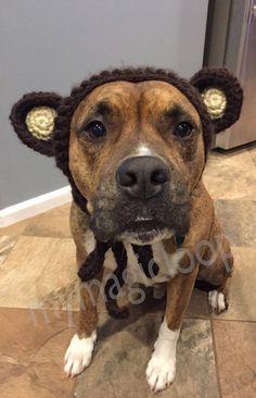 Dog Crochet Bear Headband PDF Pattern