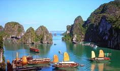 Golf-Trendziel Vietnam