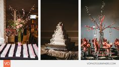 Anthony's Oceanview Wedding by VO Photographers Lifestyle Photography, Wedding Photography, Sunset Beach Weddings, Wedding Dj, Photographers, Floral Design, Wedding Inspiration, Christmas Tree, Cottage