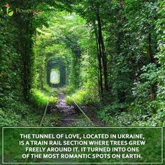 Tunnel of Love is a beautiful spot in Klevan, Ukraine. It is said that if you and your beloved come to the Tunnel of Love and sincerely make a wish, it will come true. This might be a new romantic place to discover.