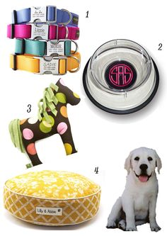 Just Lovely - new puppy must haves