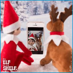 #ScoutElfIdeas for Elves with Reindeer Pets   Elf on the Shelf Ideas   Elf Pets Reindeer