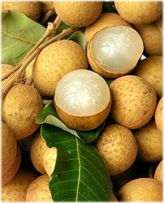 """In Indonesia these are called Lengkeng. In China, the longan-berry is called the Dragon Eye (龍眼 )fruit. In Vietnam, the """"eye"""" of the longan seed is pressed against snakebite in the belief that it will absorb the venom. New Fruit, Fruit Art, Fruit And Veg, Fruits And Vegetables, Fresh Fruit, Vegetables List, Fruit Plants, Fruit Garden, Fruit Trees"""
