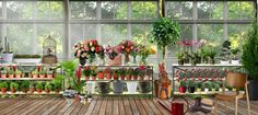 gizem's greenhouse at Neybers