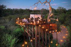 casa na árvore ou torre de contemplação na árvore..
