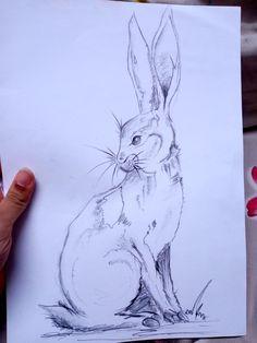 Sketches, Art, Crafting, Drawings, Art Background, Kunst, Performing Arts, Doodles, Sketch