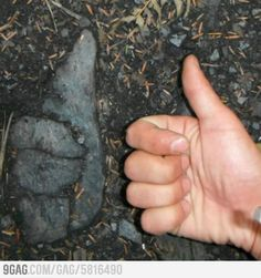 Prehistoric man like