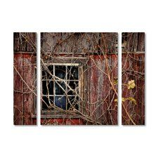 'Old Barn Window' by Lois Bryan 3 Piece Photographic Print on Wrapped Canvas Set