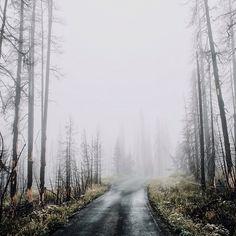 by: http://instagram.com/samuelelkins/  #instagram #photo #landscape