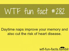 I think that they should make a mandatory nap time at work everyday! I love my naps!
