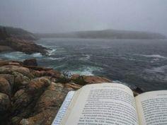 leyendo rocas