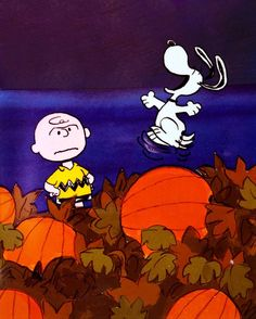 its the great pumpkin charlie brown a classic halloween special in which