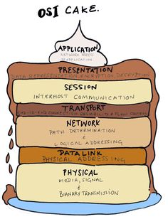 Why the OSI model is important to network engineers?