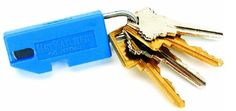 Key for electronic key system
