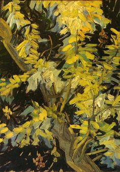Vincent van Gogh:  Blossoming Acacia Branches (1890) via The Athenaeum