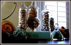 Seashell Jars