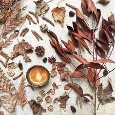 """""""Good morning !!! ☕️ and don't Forget to tag #coffeeandseasons #teaandseasons #découvrirensemble"""""""