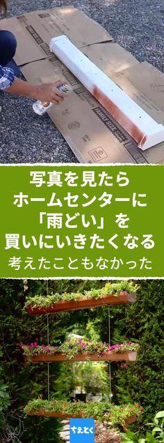 時間もスペースもないけれどガーデニングしたいというニーズに応えて、小さな場所に収まる庭作りのアイデア! #ガーデニング #家庭菜園 #庭 #アプローチ #テラス #植物 #ハーブ #アイデア #アイディア #おしゃれ #かわいい #簡単 #ライフハック #diy #ちえとく Gutter Garden, Foliage Plants, Diy Accessories, Backyard Landscaping, Botanical Gardens, Container Gardening, Garden Design, Diy And Crafts, Life Hacks