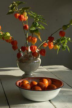 Bold orange & pale gray