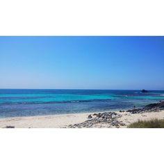 Rottnest your so pretty! Definitely coming back  @jenjennnn__ #firsttime #wa #rottnestisland #blue #sunshine by becccm http://ift.tt/1L5GqLp